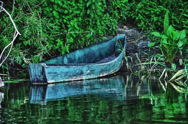11.3 Lee Scool Kayaking trip