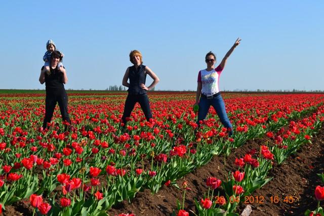 11 Crimea Race 2012 May